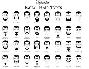 beardtypes1